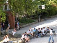 Impressionen vom Wilhelm-Gymnasium Hamburg